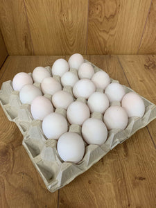 Duck Eggs Tray of 20