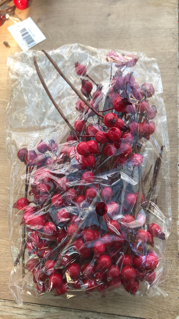 Red Berries x 50