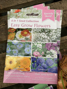 Easy Grow Flower Seed