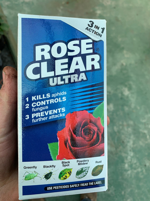 Rose Clear