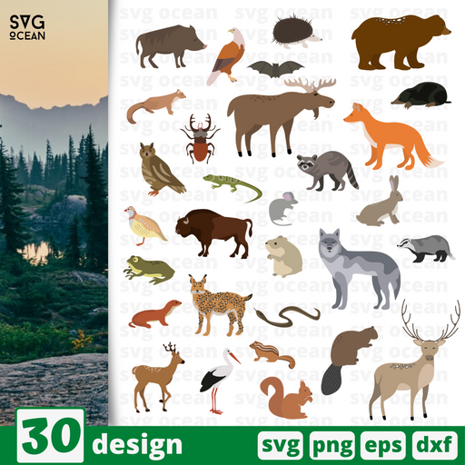 Forest animal SVG vector bundle - Svg Ocean