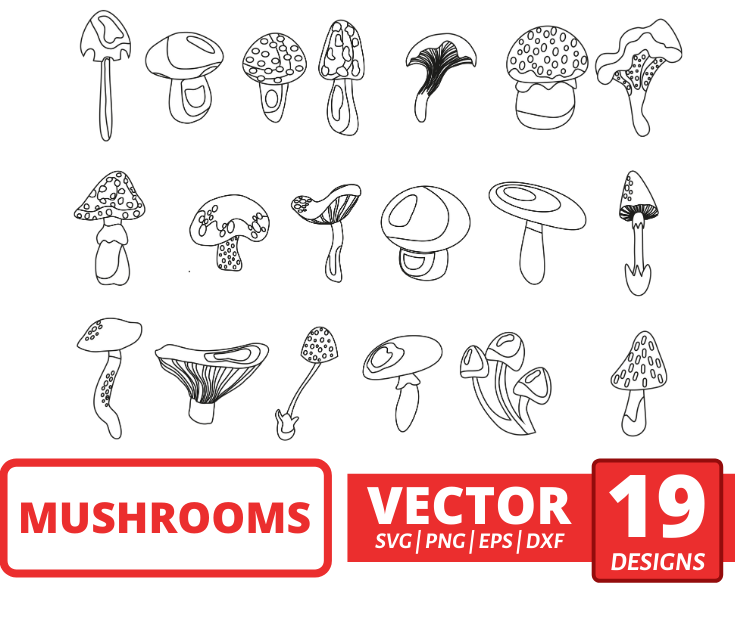 Mushrooms SVG Bundle