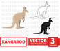 Kangaroo SVG vector bundle - Svg Ocean