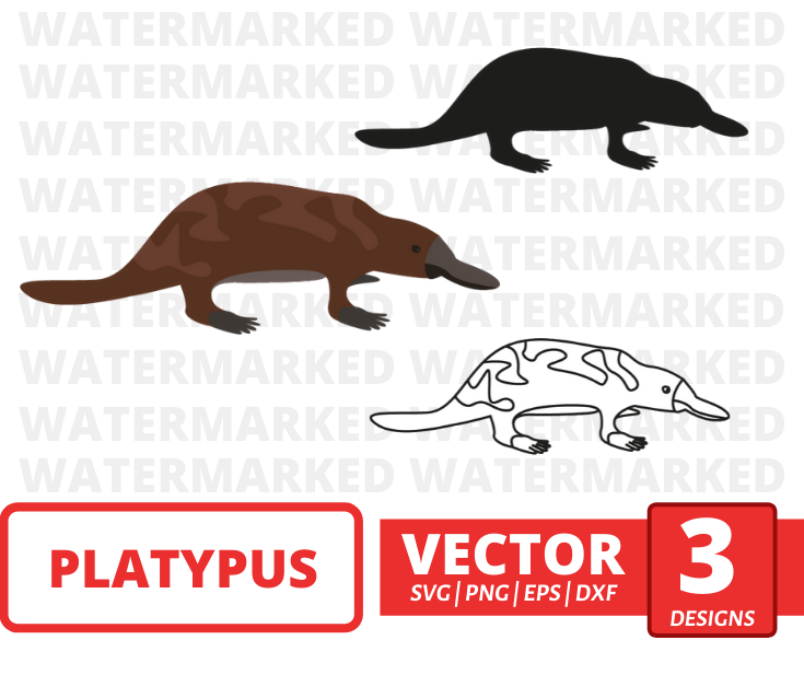 Platypus SVG vector bundle - Svg Ocean
