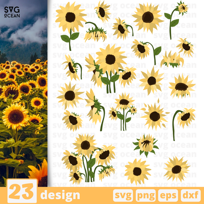 Sunflowers SVG vector bundle - Svg Ocean