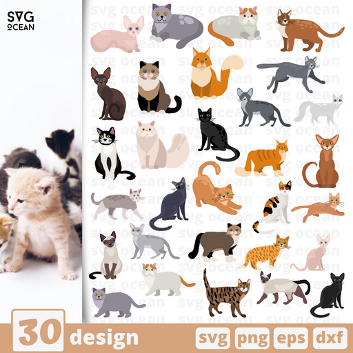 Cat SVG Cut Files - Svg Ocean