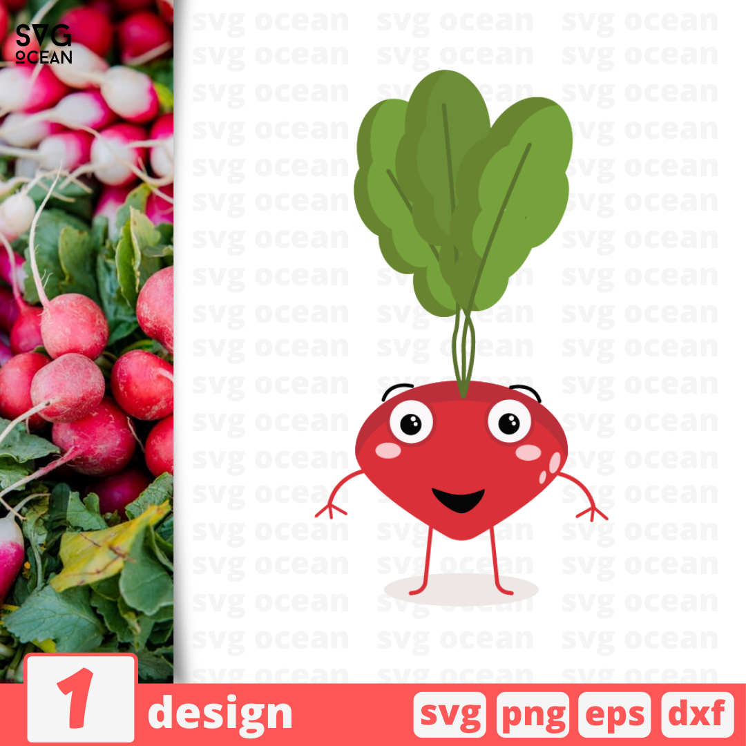 Radish SVG vector bundle - Svg Ocean