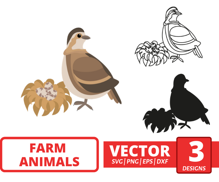 Quail SVG vector bundle - Svg Ocean