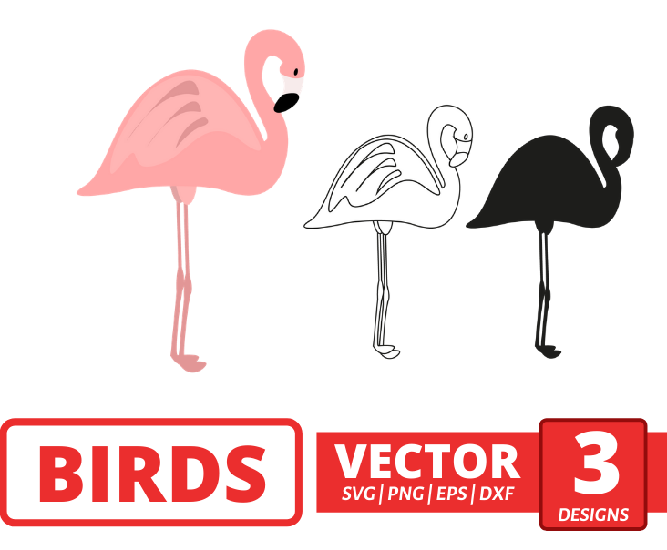 Flamingo  SVG vector bundle - Svg Ocean