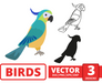 Parrot SVG vector bundle - Svg Ocean