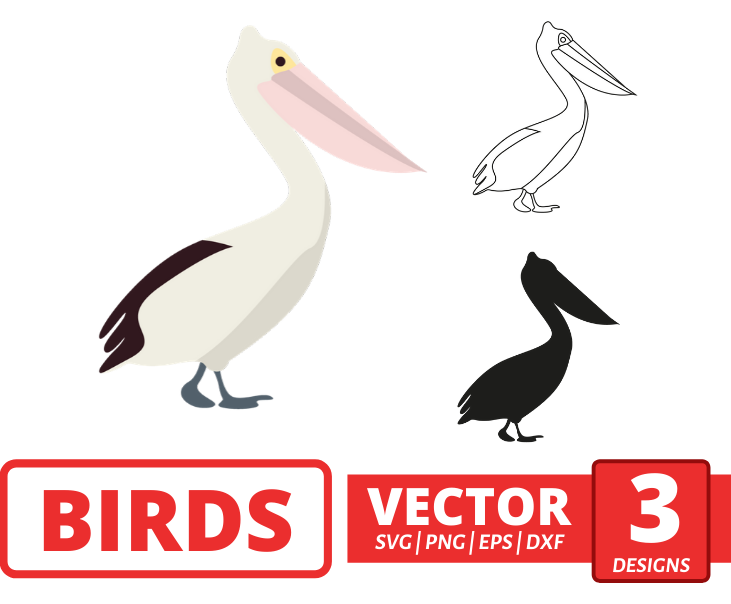 Pelican SVG vector bundle - Svg Ocean