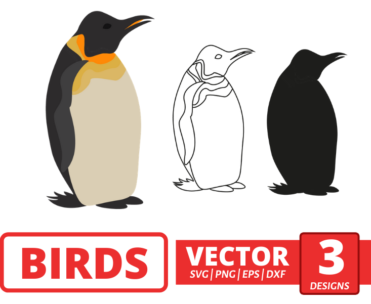 Penguin SVG vector bundle - Svg Ocean