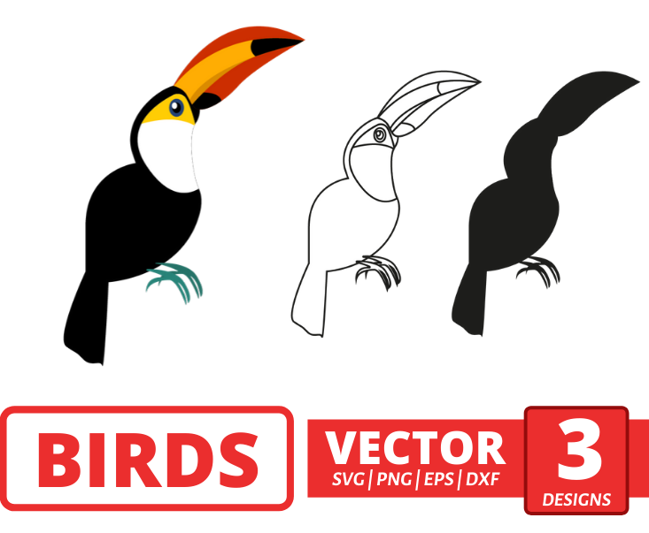 Toucan SVG vector bundle - Svg Ocean