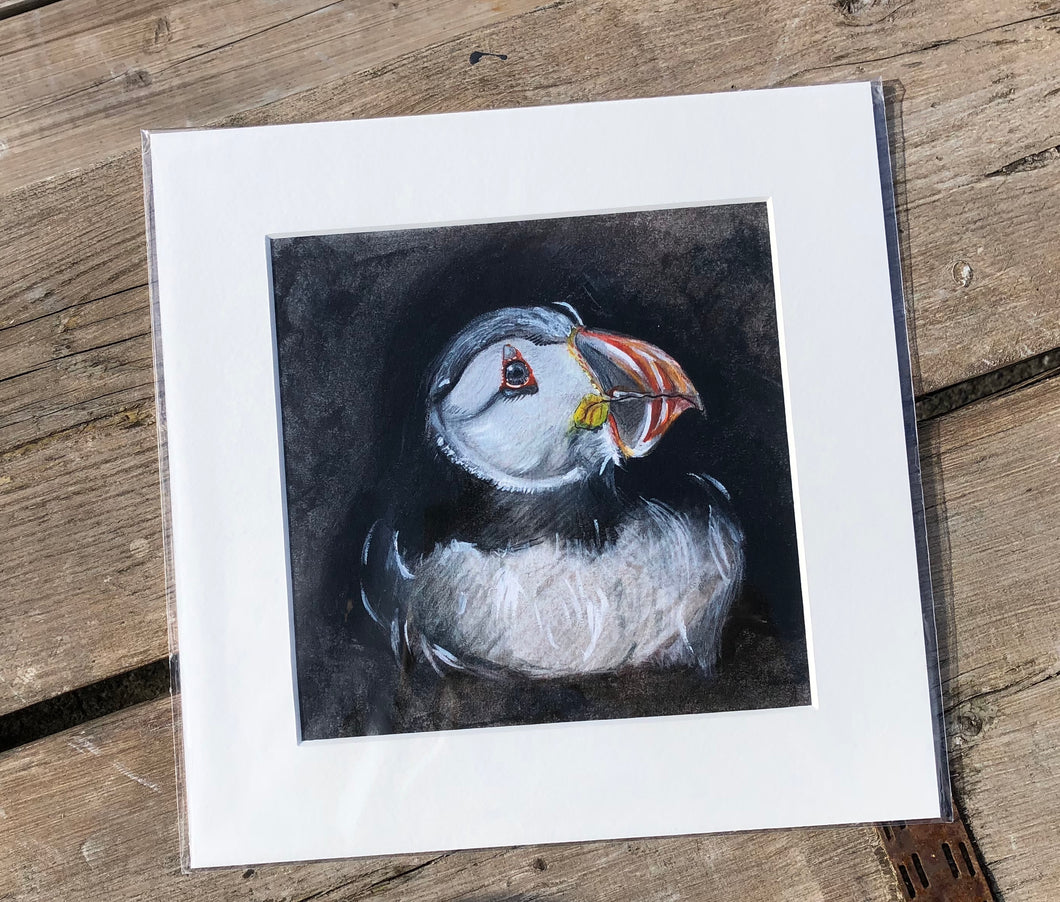 Giclee Print - 32cm x 32cm  - Nesting Puffin