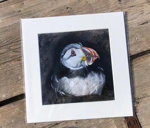 Giclee Prints - 23cm x 23cm  - Nesting Puffin