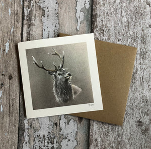 Greeting Card - Red Deer Stag