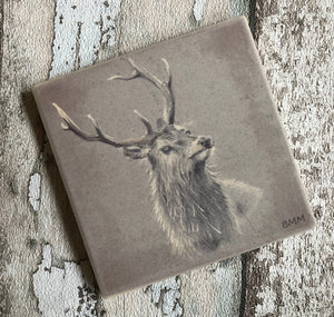 Matte Ceramic Coaster - Red Deer Stag