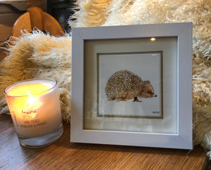 Framed Ceramic Coaster - Hedgehog