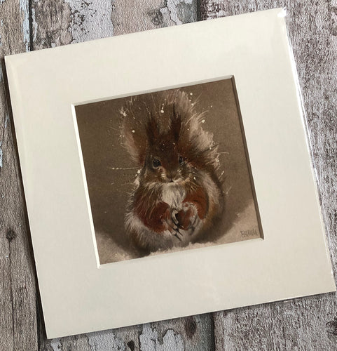 Giclee Print - 23 x 23cm - Red Squirrel in the Snow
