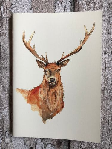 Large lined notebook - Ten Pointer