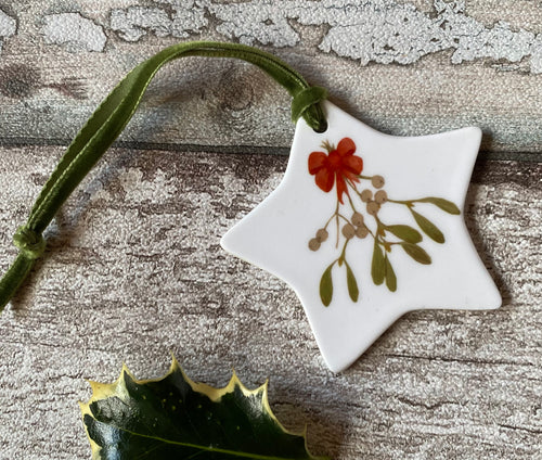 Christmas Star - Mistletoe