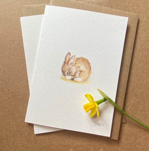 Greetings card - Shy Bunny