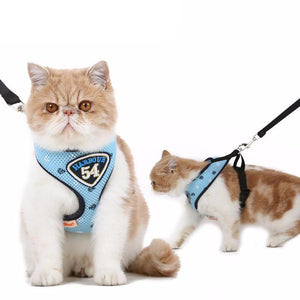 Pet Clever Adventure Harness Leash - US Stock - Prime Shipping