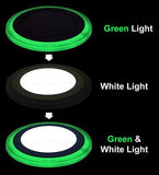 12w Recessed Ceiling LED Round Panel Green 195mm