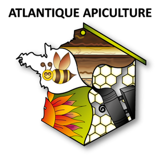https://www.atlantique-apiculture.com/
