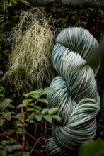 Load image into Gallery viewer, Old Man's Beard BFL DK weight.