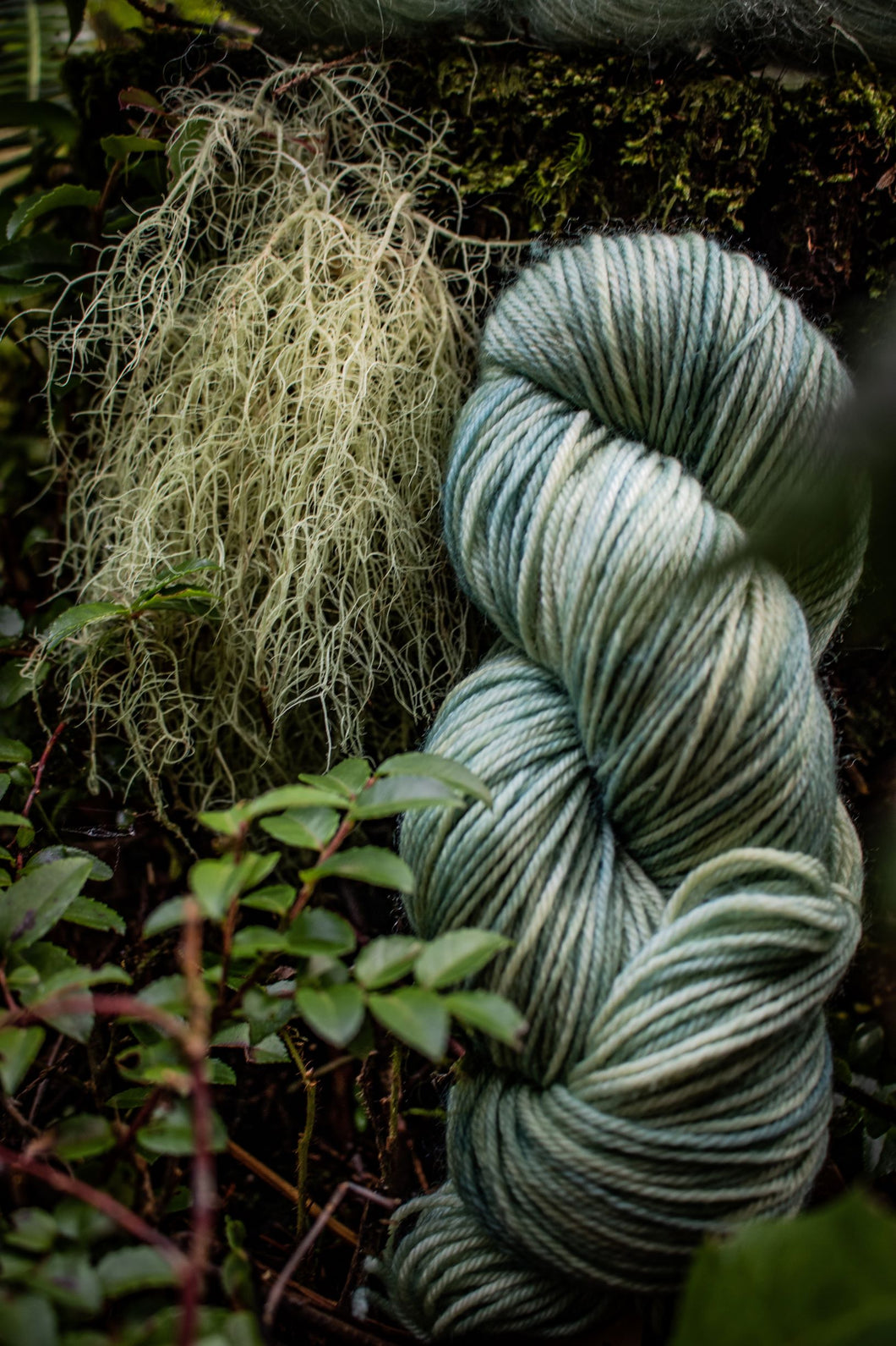 Old Man's Beard BFL DK weight.