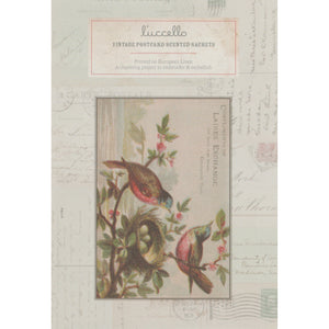 Vintage Postcard Scented Sachets - Birds in Nest Postcard - Luccello