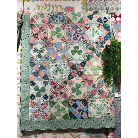 County Claire Quilt Template - Judy Newman