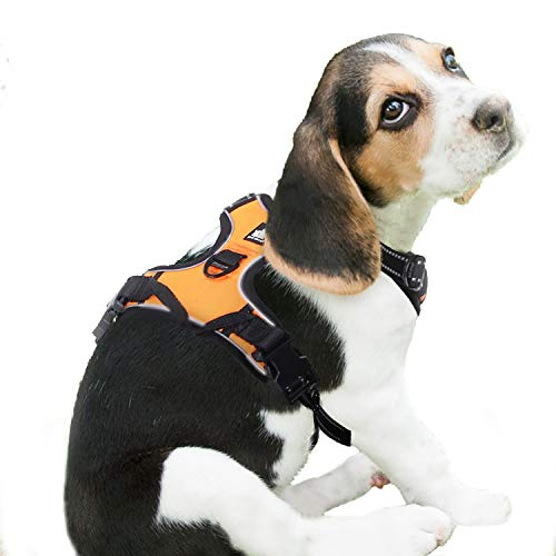 RABBITGOO Dog Harness No-Pull Pet Harness