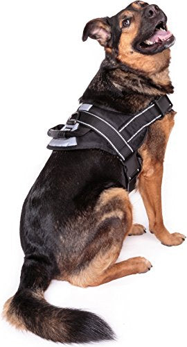Friends Forever No Pull Dog Harness Large Breed