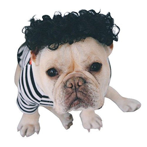S-Lifeeling Pet Wig