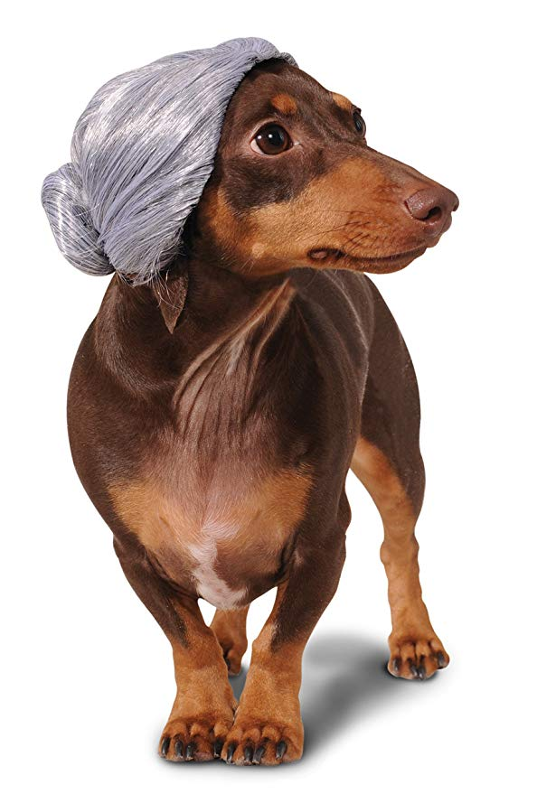 Rubies Costume Old Lady Dog Wig
