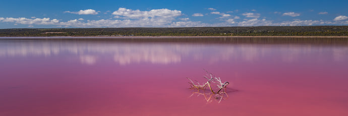 WW025 - Pink Lake Pano