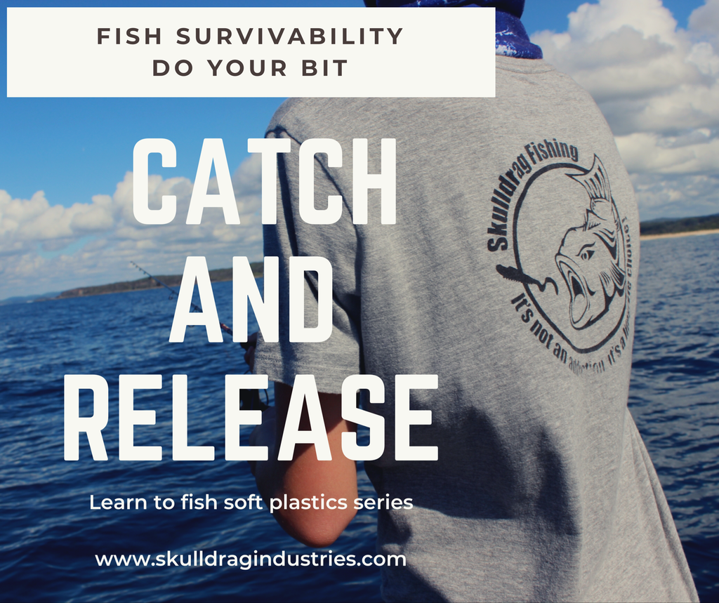 Catch and release - Fish survivability- do your bit