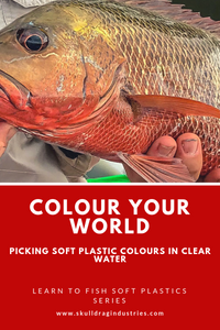 Colour your world-selecting your colour for use in clear water