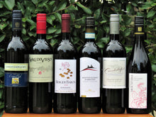 Load image into Gallery viewer, Traveller's Case - Red Wines (6btls)