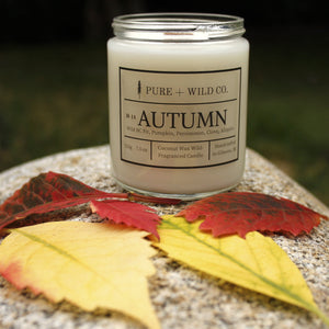 № 14 AUTUMN - Fir, Pumpkin, Persimmon, Clove, Allspice PURE + WILD CO.