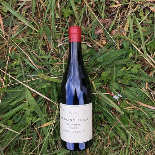 2019 Timo Meyer Bloody Hill Pinot Noir