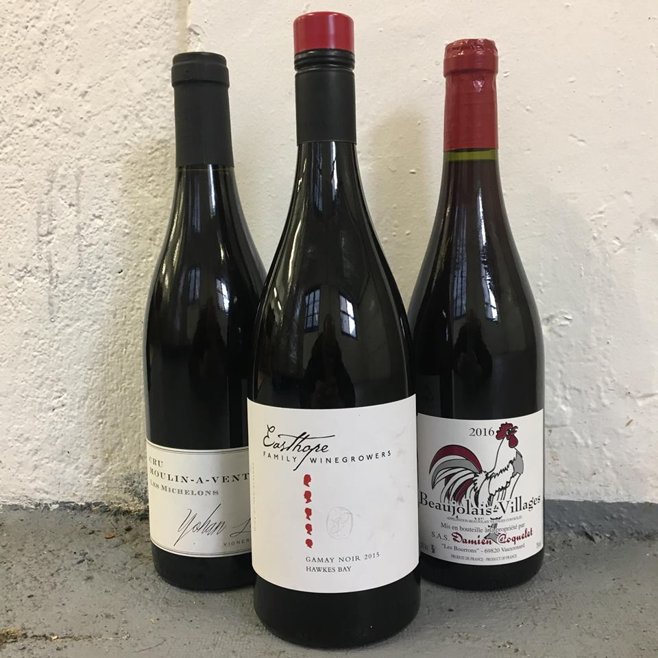Young Guns of Gamay Tasting Three Pack