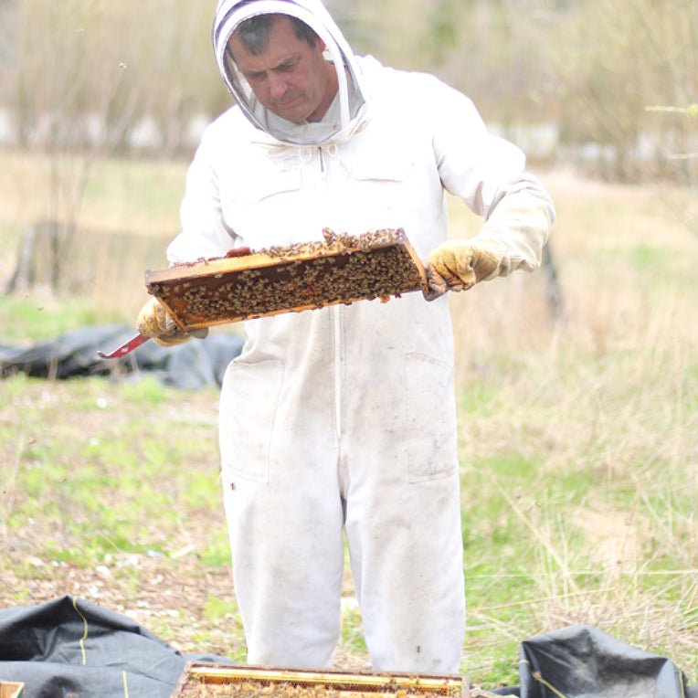 Meet Our Beekeeper