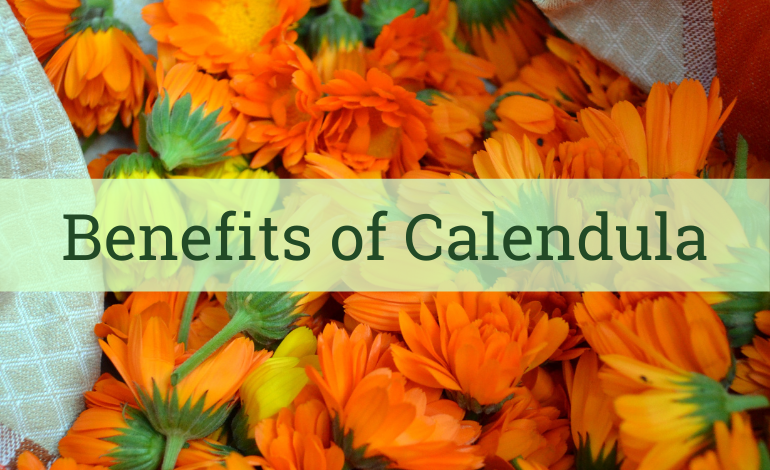 Aroma ChaiTea Blog: Health Benefits of Calendula Tea
