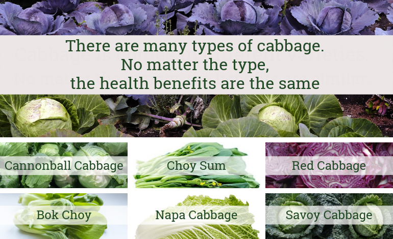 Aroma Chai Tea - Different types of cabbage