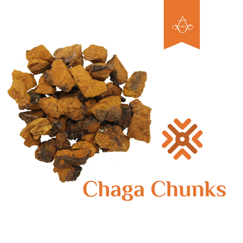 Siberian Chaga Chunks | 4 oz. (110 gr.) | Harvested January 2019 - Aroma ChaiTea
