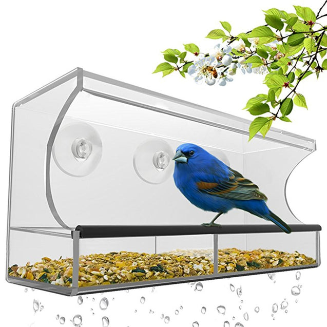 Coupcou.com: Nature Is Hangout Window Bird Feeder with Removable Tray Drain Holes and 3 Free Extra Suction Cups