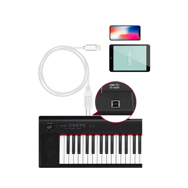 Coupcou.com: for iPhone8/ iPad Piano OTG Data Cable